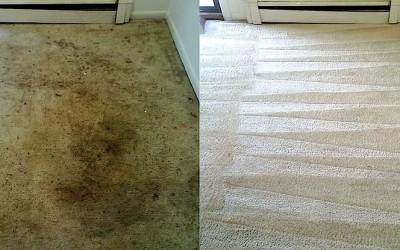 Hĺbkové tepovanie Pezinok - topservis-pezinok.sk - koberec porovnanie.